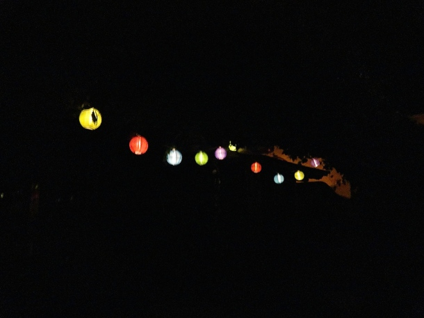 These Chinese Lanterns are solar and await the darkness to shine!