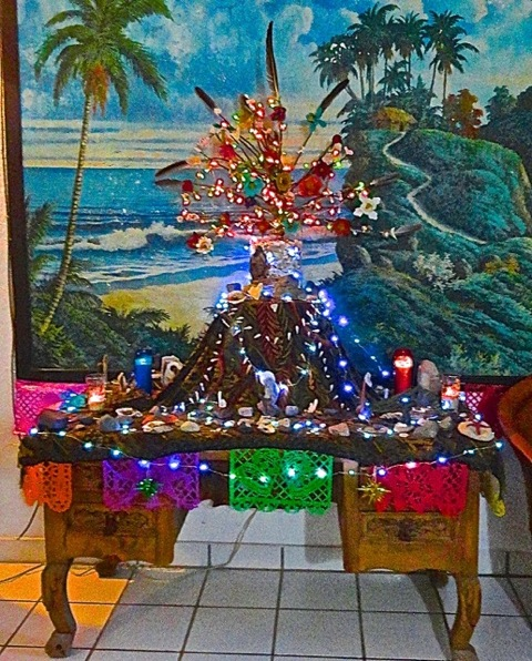 This is the tree in daylight. Palm fruiting stem covered in heart-shaped rocks and shells found on the beach, pelican feathers and flowers I made out of painted egg cartons.