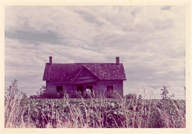 Decaying Farmhouse in Missouri Soybean Field