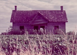 Decaying Farmhouse in Missouri Soybean Field – Version 2