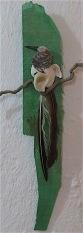 De Tail of Long-tailed Darter