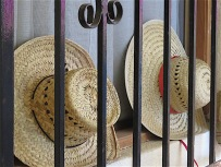 These straw hats stored on-edge behind the grillwork of Carol's house are one of my favorite images. The round shapes of the hats and curliques, the rectangular divisions on the grilll and the zigzag/triangular weave of the hats create busy detail in what is otherwise a simple scene.