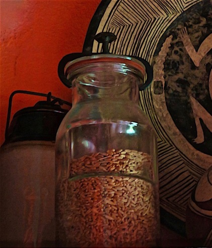 The wheat shown above and in this jar was collected by my oldest sister from the last wheat crop before we sold the ranch. I brought it with me to Mexico, where it sits over the cabinets in the kitchen.