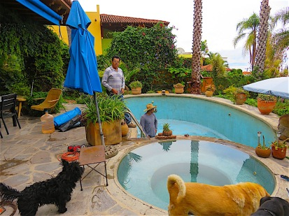 Mateo gets instruction from his dad Chino, above, and moral support from the three dogs.