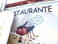 Why would a restaurant be named after the #1 insect calculated to make you not want to visit a restaurant?