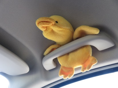 Although Little Duck at first remained in his ceiling seat restraint, as befitted his status as a sometime creature of the air, he soon grew restless.