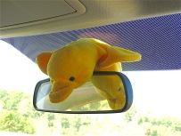 At first he decided to practice his flying form, making use of the rear vision mirror,