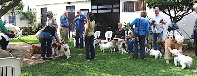 All in all, a good many humans showed up with dogs, cats, burros, rabbits and I know not what other creatures, and it was a completely peacable kingdom. Not one bark or snarl or fight. Between animals or humans. Amazing.