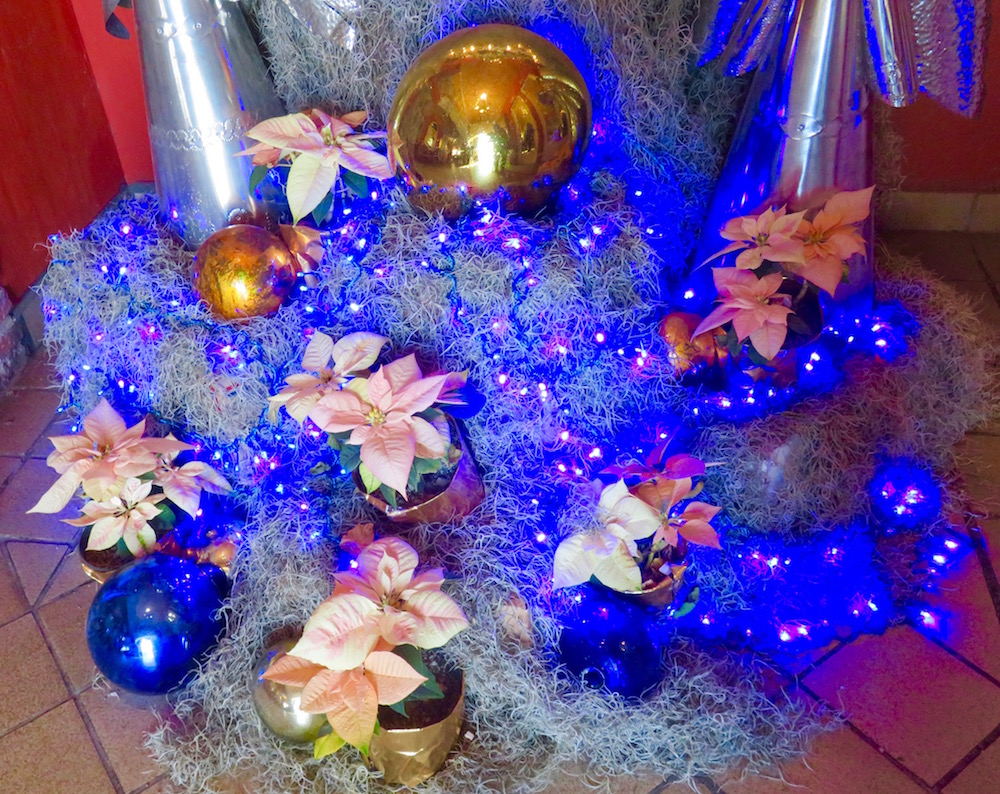 img_1783 - I Ll Have A Blue Christmas