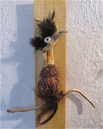 Dilly bird