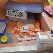 Annie's efficiency apartment/intensive care unit.
