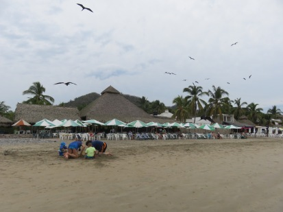 It was hard to capture the pure numbers of the frigate birds assembling.