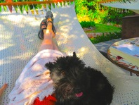 I decided to join her! I've gotten real good at jumping up into the hammock, sometimes jumping up so fast that she lands on top of me as she's getting in the hammock. Then it is an interesting tussle.