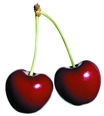 safe_safe_2_cherries