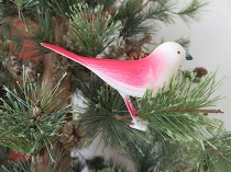 These little birds covered the branches of our tree each year.