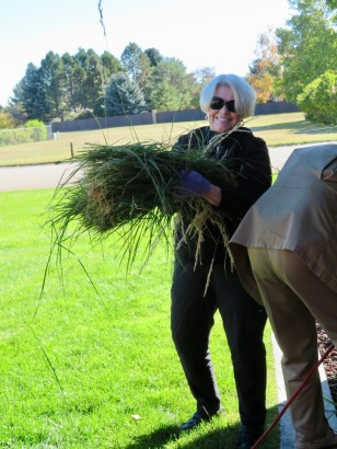 Patti and Jim decided it was time to cut back the tall ornamental grass before the snow came.