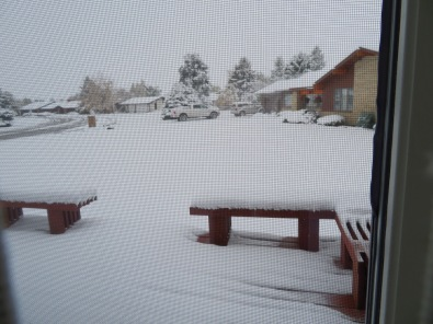 The back porch went from a light dusting to a heavy icing,