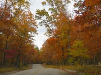 and after another long winding drive through the beauties of the Ozarks,