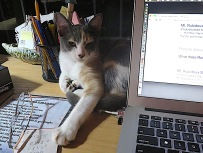 """See this 'to do"""" list? Does it happen to have feeding time on it?"""