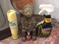 Air freshener and special cat odor cleanser and a bottle of nail polish. What can they possibly have in common?