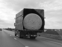 Cotton bale on its way to a local cotton gin.