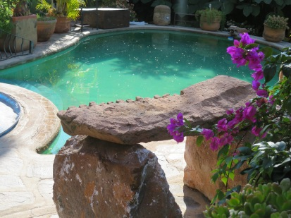 but recently it occurred to me that the large slab sculpture next to my pool and directly in my line of vision from my computer desk would be an excellent place to scatter seed so I could watch the birds feed there.