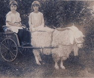 Mother:Edith in Goat Cart