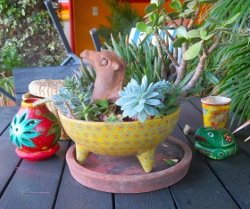 This beautiful hand-painted bowl from Michoacan increases in beauty with the addition of nature's beauty.