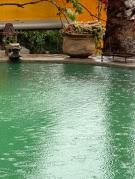 Rain was stippling the pool,