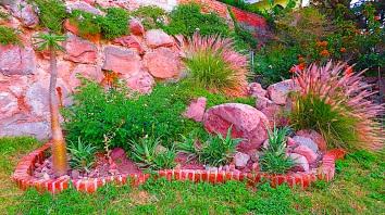 Corner Boulders with Lantana, Aloe, Sun Roses, Exotic Grass and Madagascar Pine.